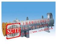 ST1002熔(销)盐电加热器