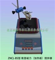 ZNCL-BS磁力攪拌器