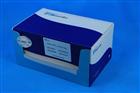 人角化细胞内分泌因子(KAF)/双调蛋白(AR)ELISA Kit