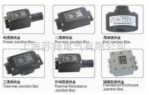 防爆接线盒 |电源接线盒|尾端接线盒|隔爆接线盒|三通