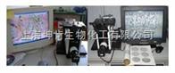 XJP-6A重庆光电仪器/数码金相显微镜