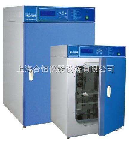 水套式160升二氧化碳培养箱