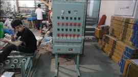 BZD-ZN浙江防爆配电箱厂、订制非标防爆柜、防爆配电柜价格