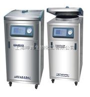 LDZM-80KCS上海申安医疗器械/80立升智能型灭菌器