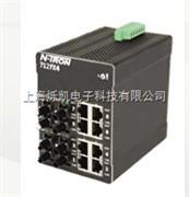 309FXE-N-SC-80,309FXE-N-ST-80