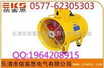 温州热销BYDF32-750W隔爆型移动式多用风机