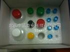 盐酸克仑特罗ELISA试剂盒 900元/盒