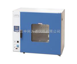 DHG-9000台式鼓风干燥机