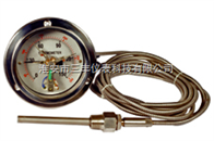 WTQ/WTZ288電接點壓力式溫度計