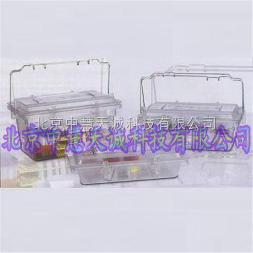 二生物样品转移箱 意大利 型号:BIKS-102