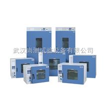 DHG、DGG电热干燥箱