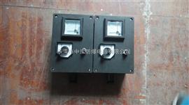 FXX-S防水防尘防腐检修插座箱、FXX-D防水防尘防腐检修插座箱、三防检修插座箱