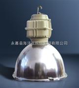 GC002-L400高顶照明灯 华荣品牌直销 (GC002-L400 GC002-L400),防水防