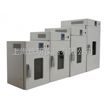 DNP-9052电热恒温培养箱