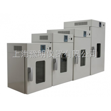 DHG-9240A電熱恒溫鼓風干燥箱