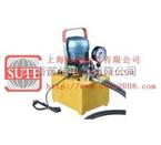 DYB-63AB 雙回路電動泵(復動式)