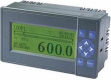 液晶显示调节仪BDE-XMTA-1000B