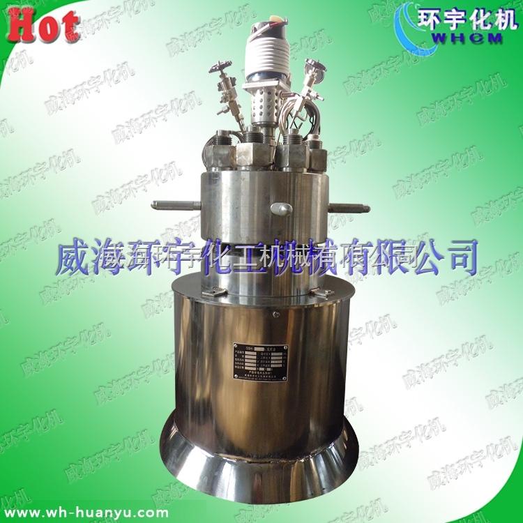 5L高温高压电加热反应釜