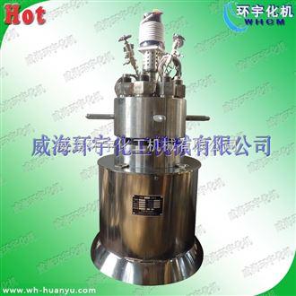 GSH-高温高压电加热反应釜1L