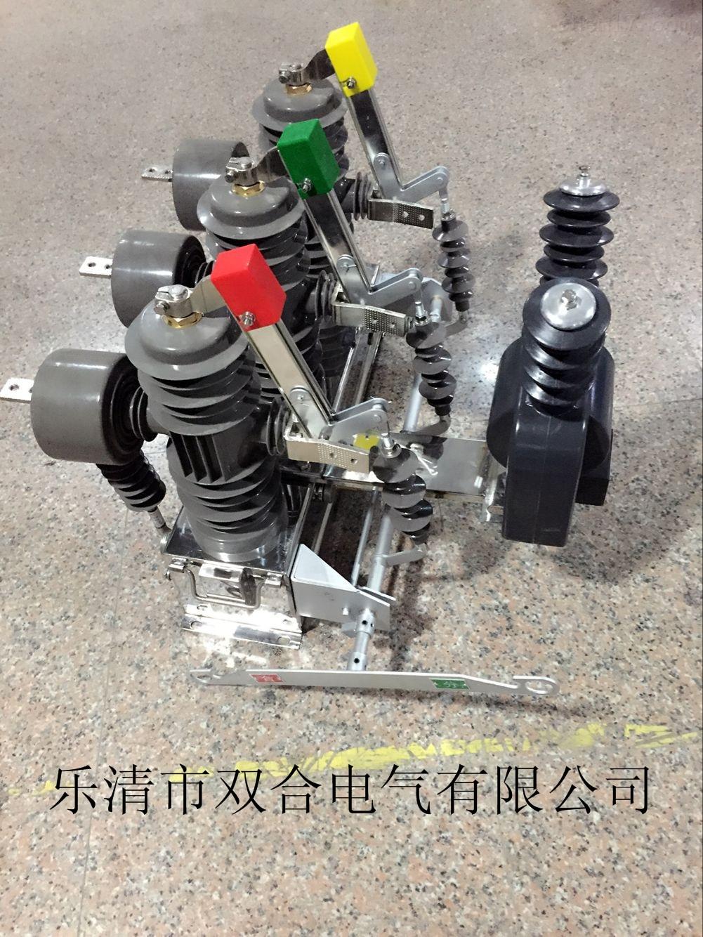 zw32-12fg电动分界智能永磁真空断路器可手动分合闸