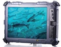 网箱养殖鱼类生物量评估系统
