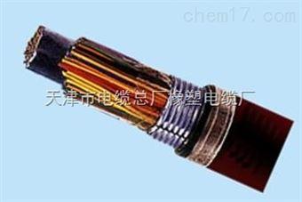 阻燃通信电缆zr-hya-20*2*0.4质量及价格