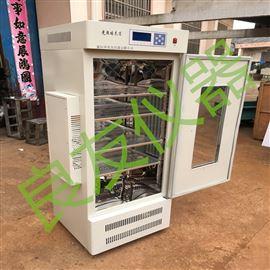 MGC-250BP智能光照培养箱