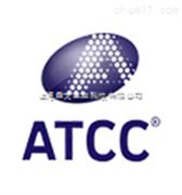 ATCC 10231 白色假丝酵母