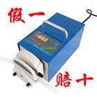 BT100-2J 蠕动泵 蠕动泵公司