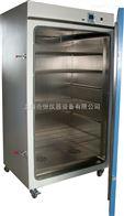 DHG系列精密干燥箱 立式精密干燥箱