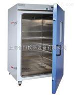 立式鼓风干燥箱 高温烘箱DHG-9960A