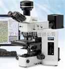 金像显微镜 BXiS