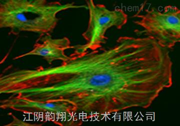 Chroma濾光片