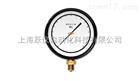 YKJ-150、150A、150B精密压力表