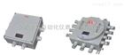 DL-AHDL-AH系列防爆接線盒