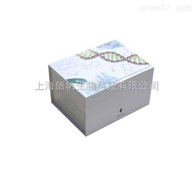 大鼠白介素1β(IL-1β)elisa试剂盒 现货供应