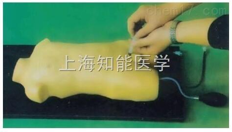供应儿童股静脉与股动脉穿刺训练模型_动脉穿