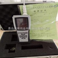 LB-BQ-PLB-BQ-P智能手持式青岛路博VOC气体检测仪
