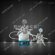 微型不銹鋼高壓反應釜