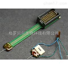 NeuroNexus標準電極