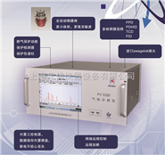 FV3320 微量CO CO2在线气相色谱仪