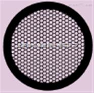 Standard Hexagonal Mesh