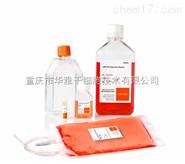 Corning NK細胞活化擴增培養基套裝 NK細胞體外擴增試劑盒