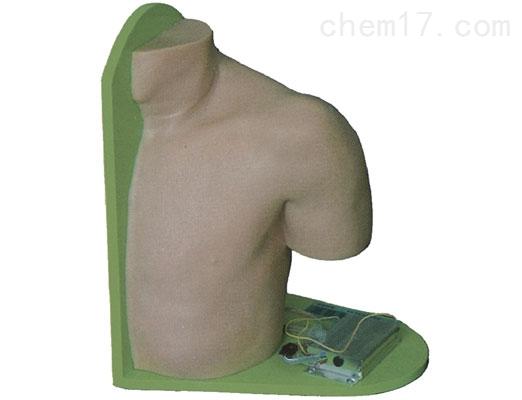 肩关节腔内注射模型 临床综合专科