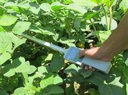 植物作物冠層分析儀