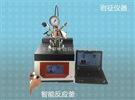 YZSR-500500ml SmartMax智能实验室反应釜