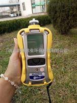 华瑞RAE便携式有害气体检测仪PGM-62XX(六组份)