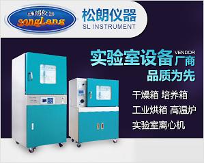 重庆市松朗电子仪器有限公司