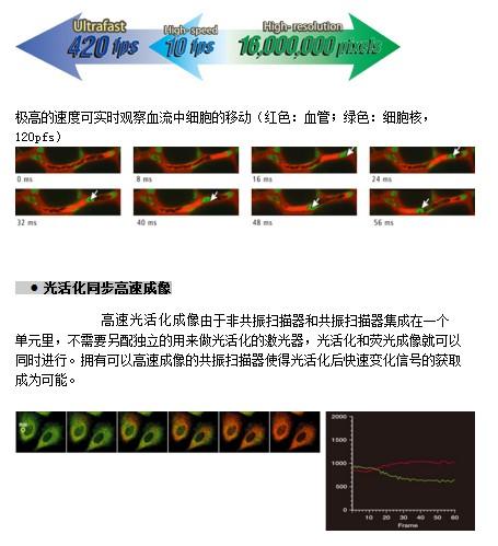 Nikon尼康显微镜 A1+/AR1+共聚焦激光显微镜系统工作原理