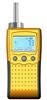 800便携泵吸式氧气检测仪